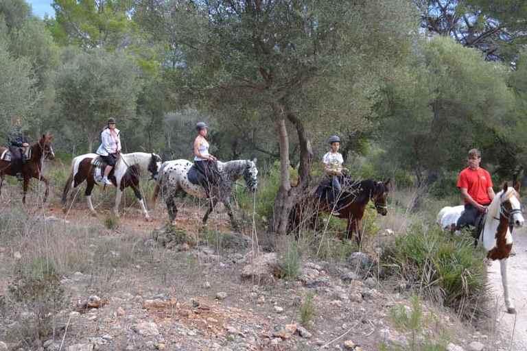 Rancho Ses Roques